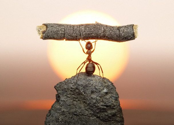 Start-up Business VoIP - Maintaining a Work Life Balance